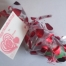 Thumbnail image for Fun Valentine's Day ideas for kids!