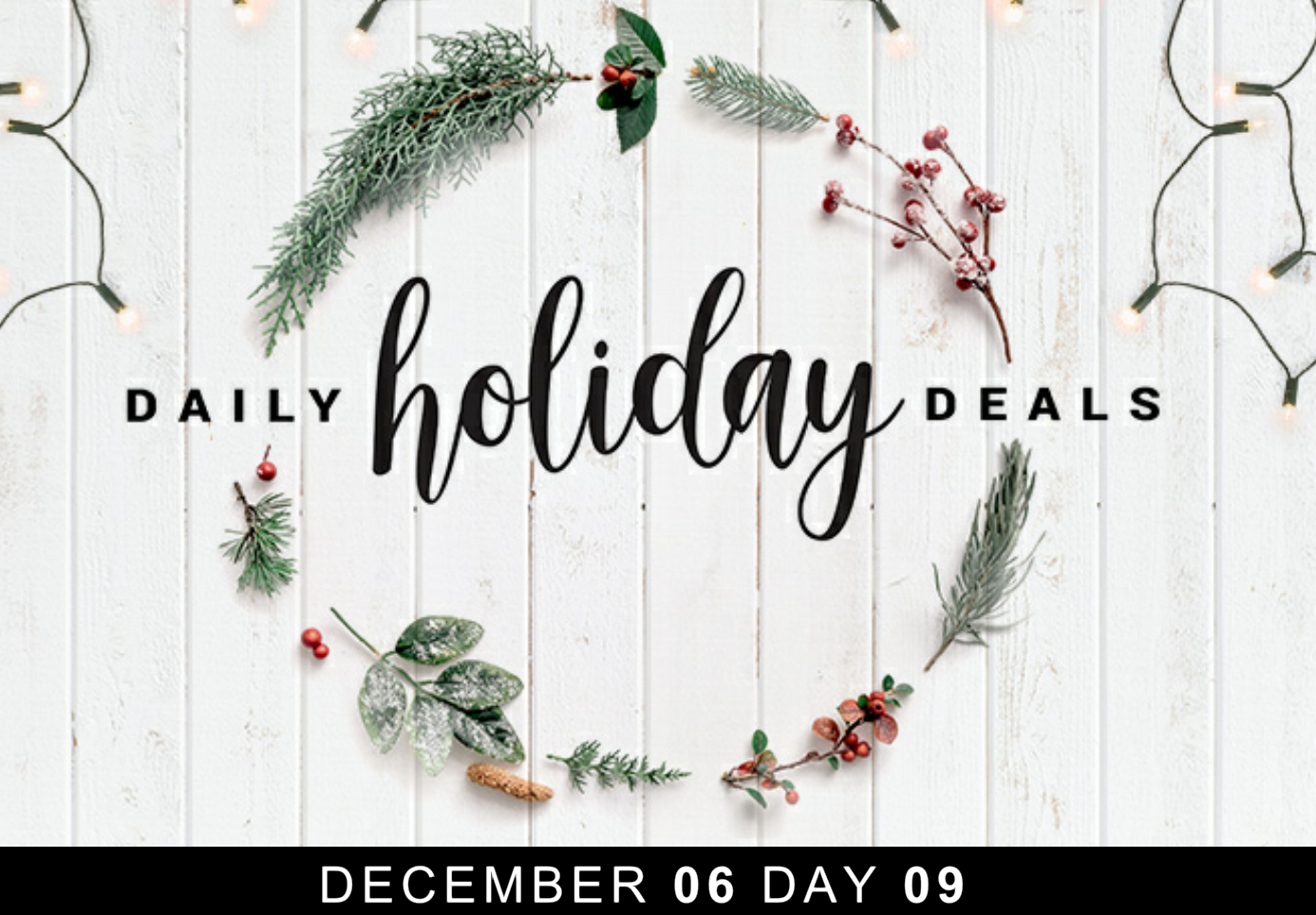 Costco Daily Holiday Deals - Day 9 - Save Money in Winnipeg